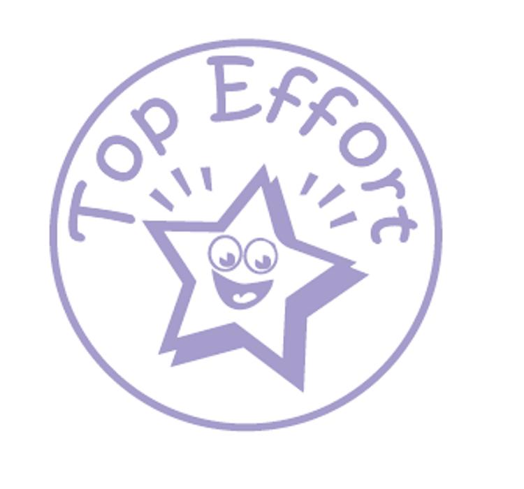 Top Effort Teacher Stamp 18mm