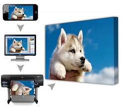 Personalised Canvas Print A3 - 12x16